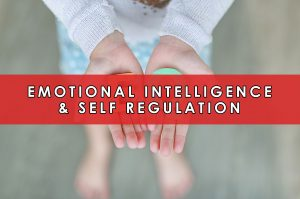 Emotional Intelligence & Self Regulation | HeartFirst Education Core Value