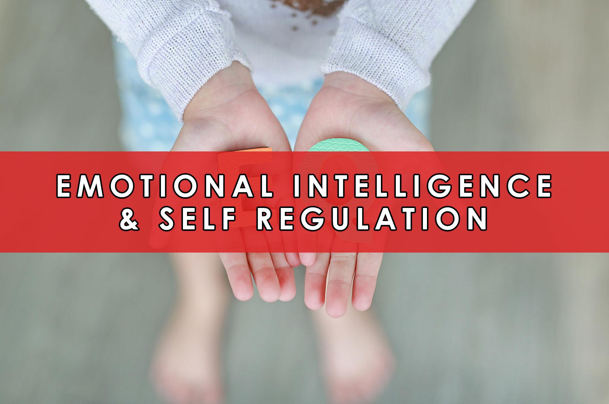Emotional Intelligence & Self Regulation   HeartFirst Education Core Value