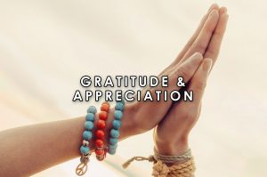 Gratitude & Appreciation | HeartFirst Education Core Value