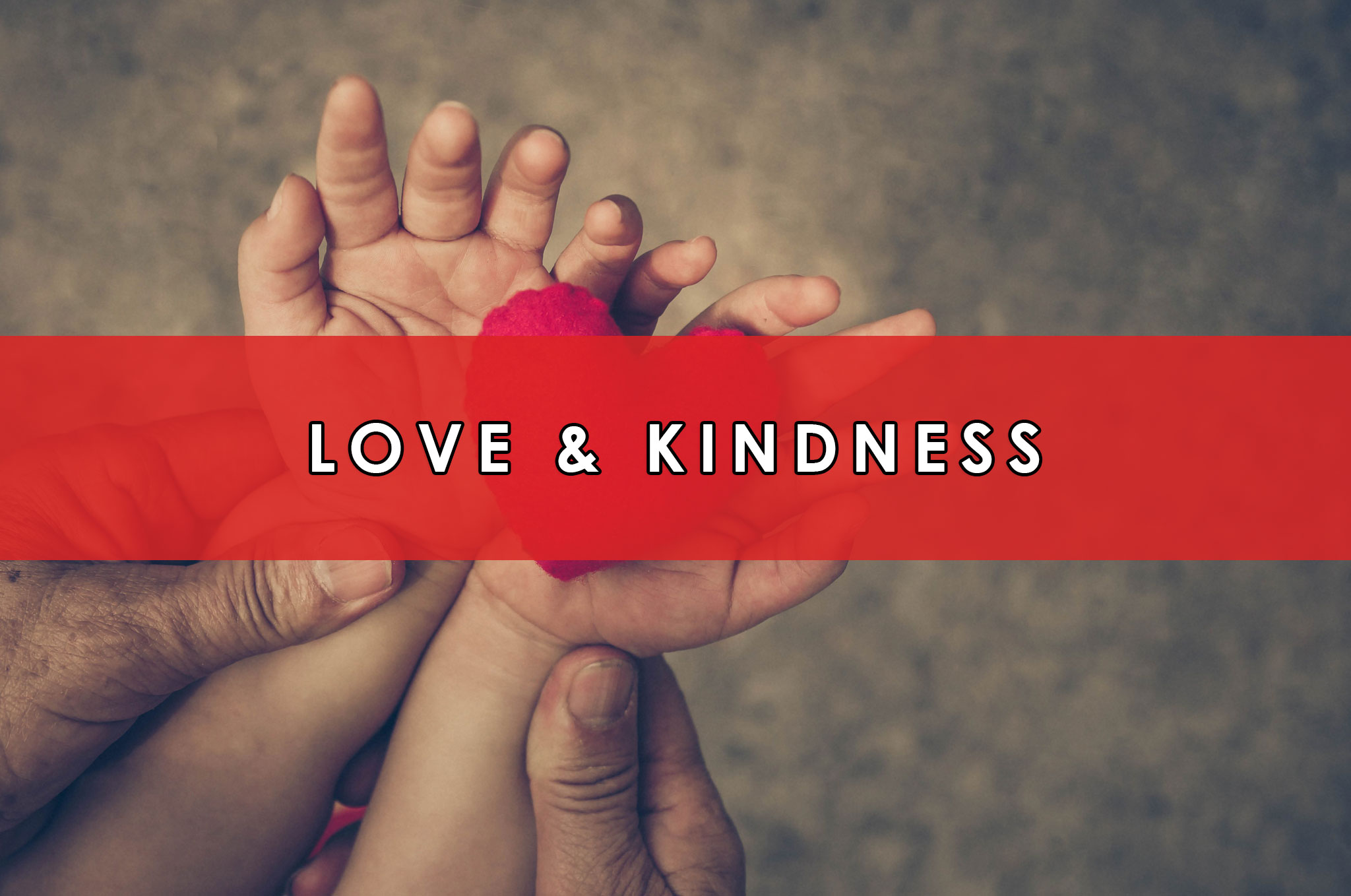 Love & Kindness | HeartFirst Education Core Value