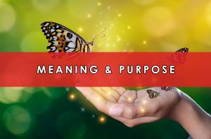 Meaning & Purpose | HeartFirst Education Core Value