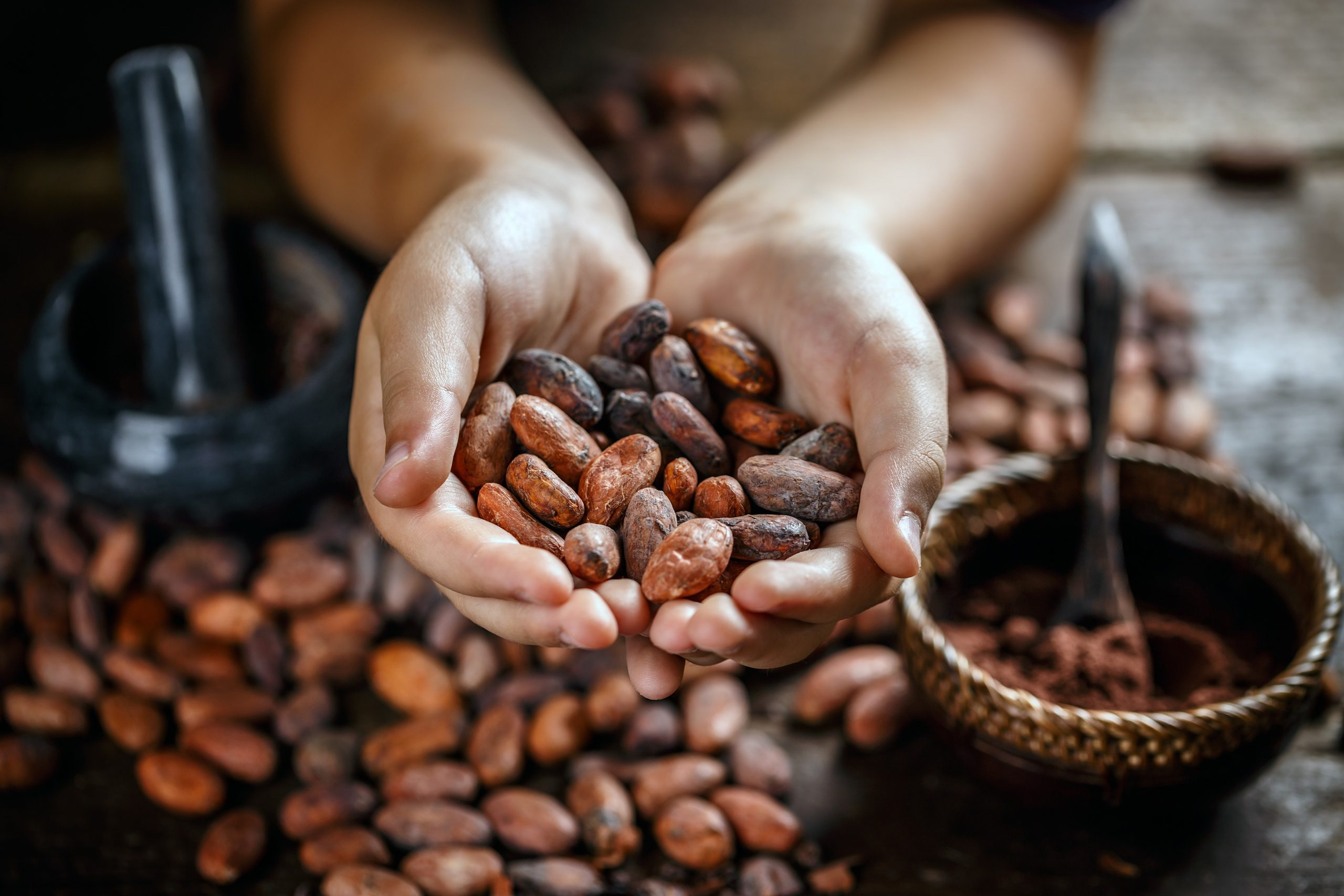 Heart Opening Cacao | HeartFirst Education